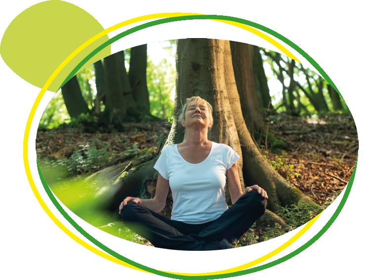 Shinrin Yoku · Kurs zum Stressmanagement